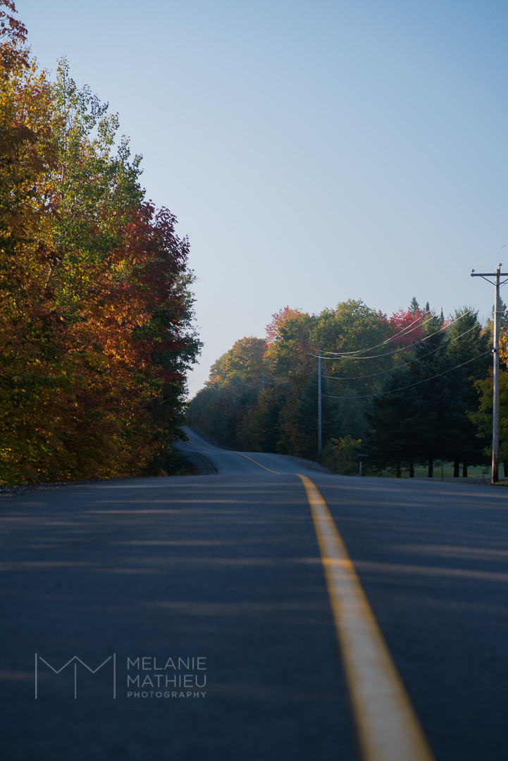 Road L'Ange Gardien, QC. Fall colours