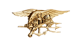 navy-seal-pin.png
