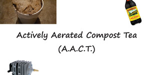 Actively Aerated Compost Tea (A.A.C.T.)