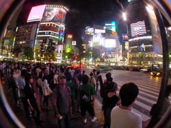 Shibuya Intersection - Tokyo Japan