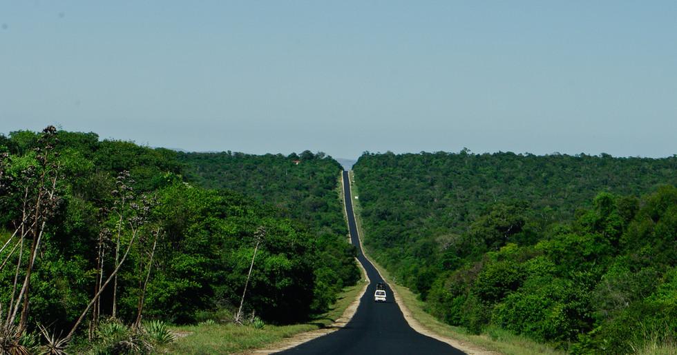 Mit nur 2% der Landfläche Afrikas weist Madagaskar mehr Variationen als der ganze Kontinent zusammen auf, …
