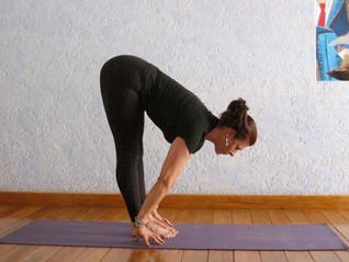 Yoga y Despertar Sensorial