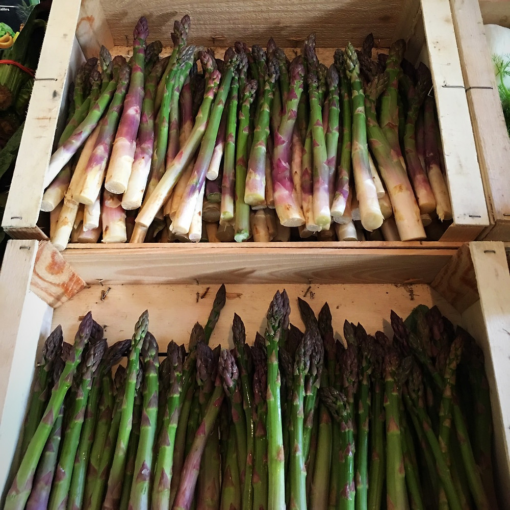 Asparagus from the South of France
