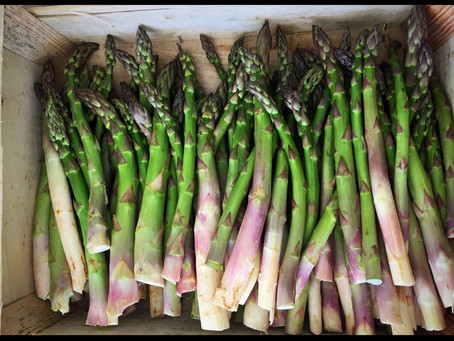Let's reveal the secret of asparagus