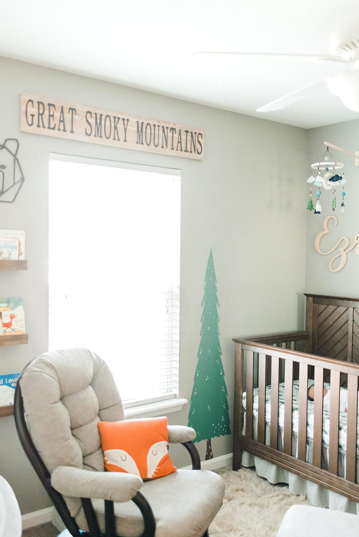 In home newborn lifestyle photographer - JAX Jacksonville St Augustine Ponte Vedra Nocatee - Colleen Lindhurst Photography - Family Newborn Maternity Photographer cats