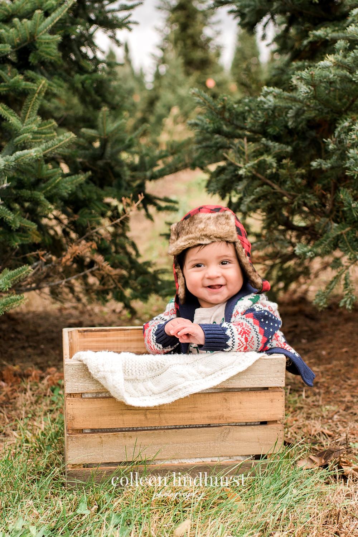 Columbus Ohio Photographer | Family Photographer | Christmas Tree Farm Mini Sessions