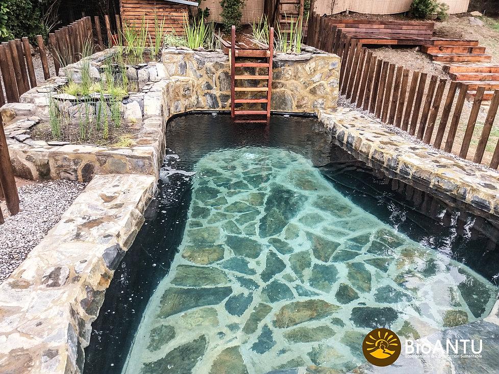 Bioantu piscinas naturales humedales depuradores de for Plastico para piscinas naturales