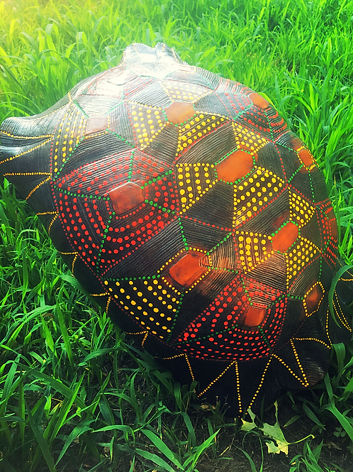 "Handpainted Turtle ""shell"""