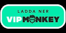 Ladda_ner_ikon.png