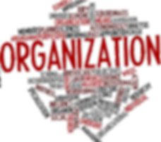 Graphic for Organization