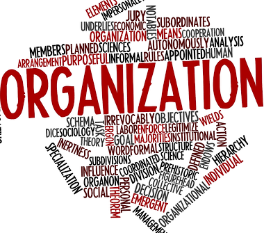 Graphic for Organization
