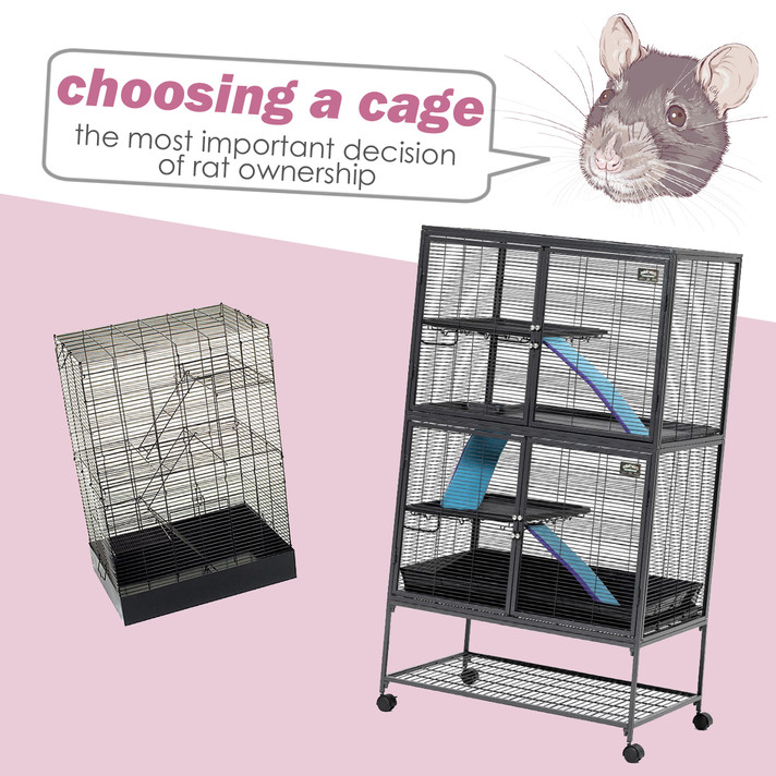 Care Guide: Choosing a Rat Cage