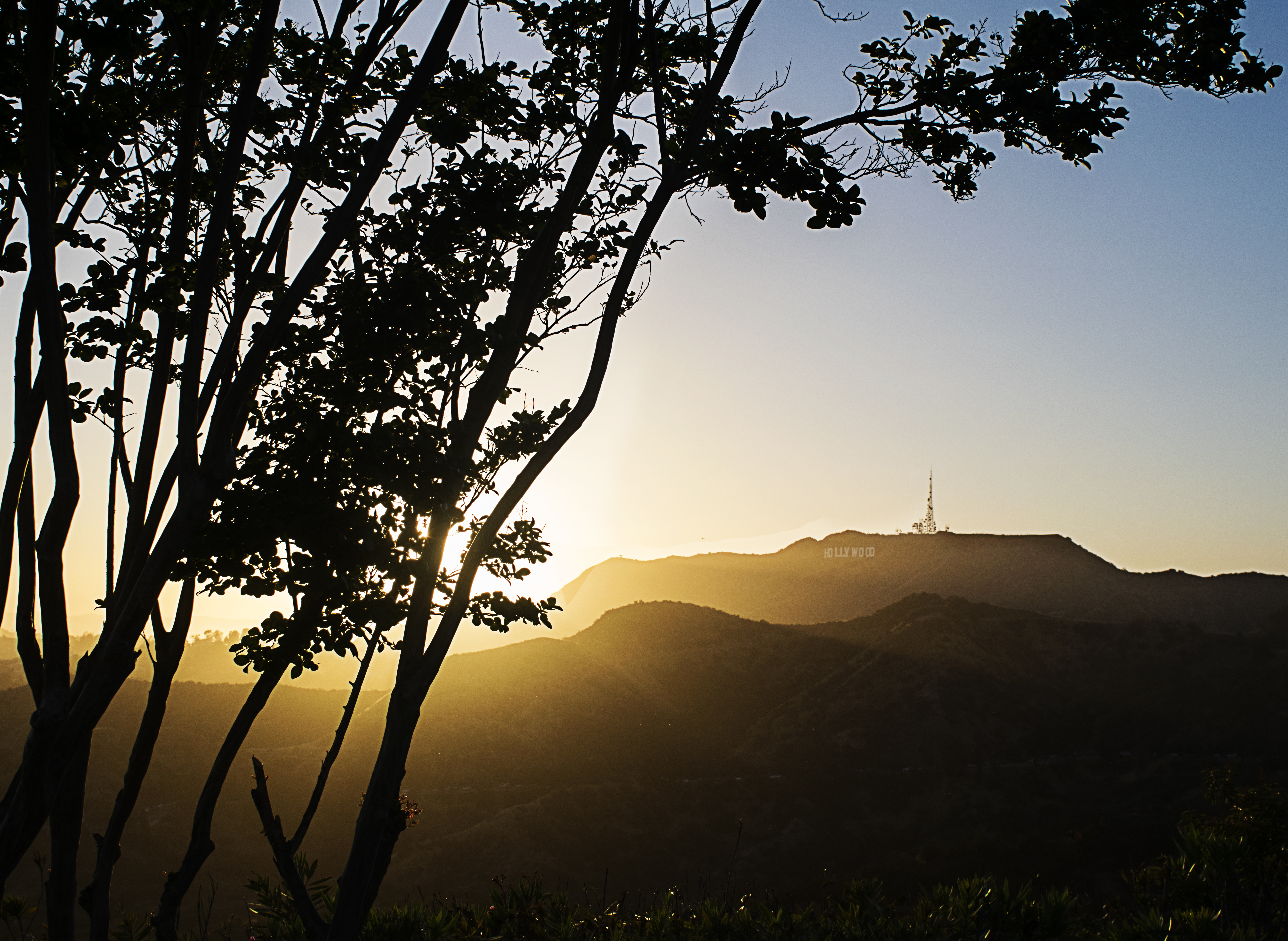 Hollywood Sign from the Griffith Obs