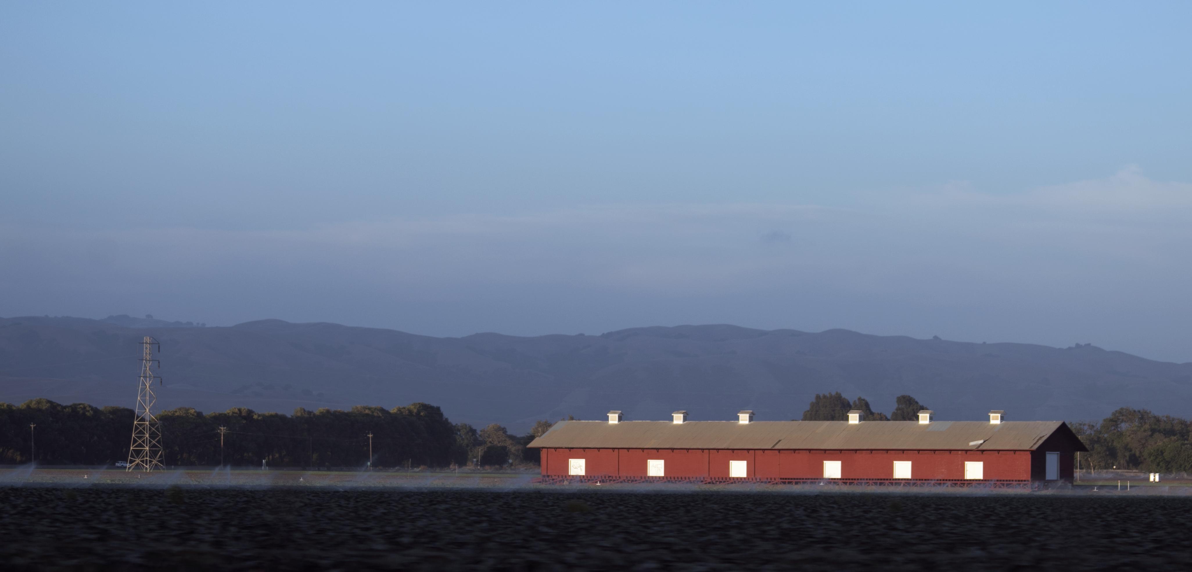 Californian farmland.