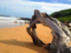 Kauai.jpg