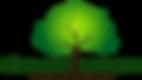 logo_sitio_são_mateus.png