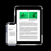 ebook emerald.png