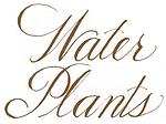 WaterPlants.png