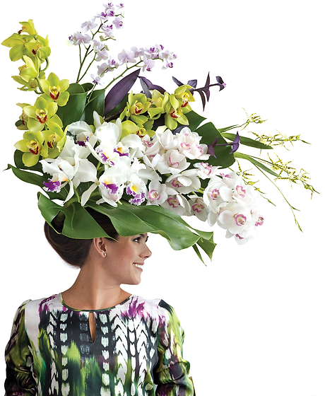 Orchids1.png