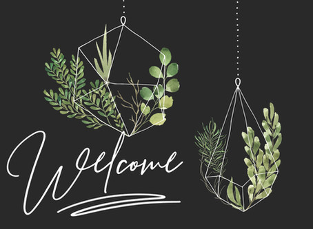 Welcome! Free Bundle for you!