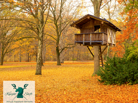 3 Steps to Building the 'Treehouse'...