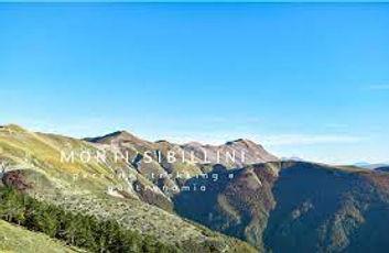 monti sibillini - Shinrin Yoku - Forest bathing