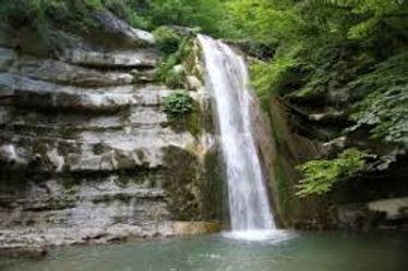 toscana - Shinrin Yoku - Forest bathing