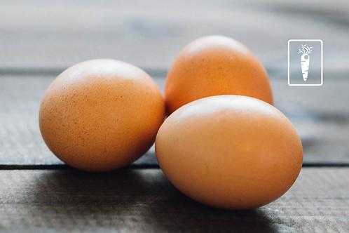 Organic Free Range Eggs (Large)