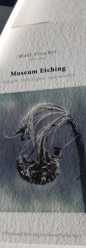 Hahnemühle CasaSuau