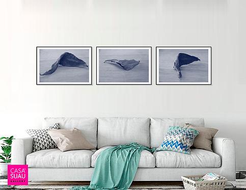 Hojas de Matico, 40x60 Print Art Giclée, 3 piezas