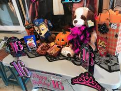 Bark Avenue Pet Resort Jacksonville Florida