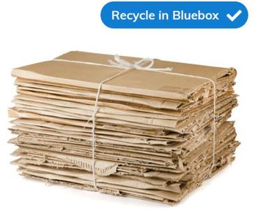 Heavy Cardboard