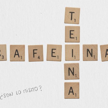 Teína y Cafeína, ¿Son lo mismo? Mitos y realidades