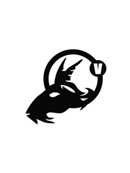 Zodiac Capricorne