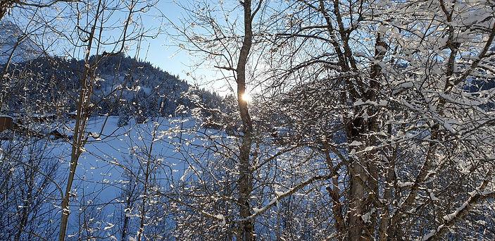 le Gibloux en hiver.jpg