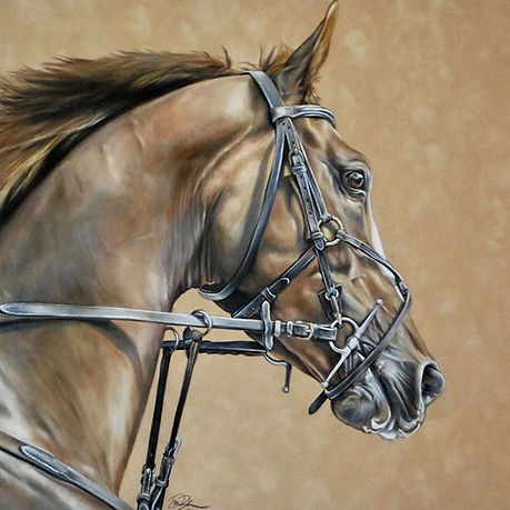 Some more of my #equineart ! ._The origi
