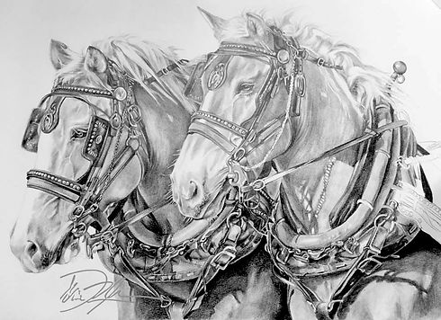 Graphite Draft Horses