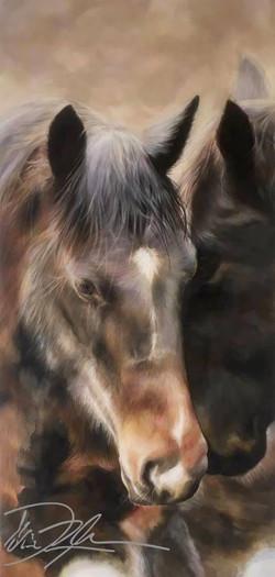 peace brown horse.jpg