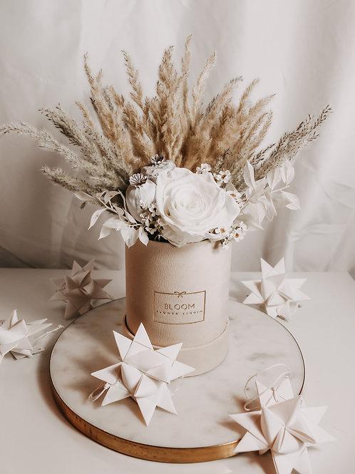 "Dried Flowers Box ""Daisy"""
