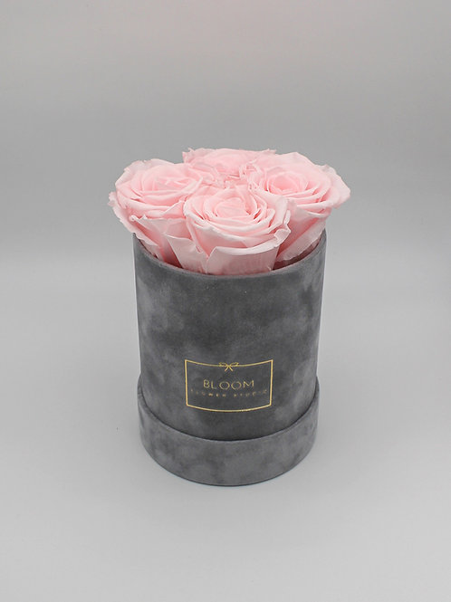 Infinity Box Velvet Small - Baby Rosa