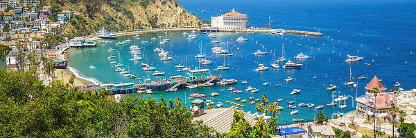 catalina-island-avalon-harbor-panorama-p