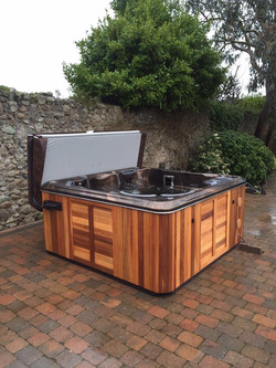 Hydropool Self Cleaning 670