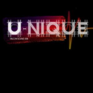 U-niquelogo18v1.jpg