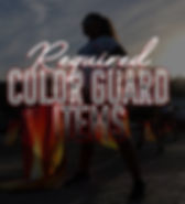 sdstore-colorguardtallrequired.jpg
