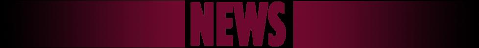 News-MSDheader2.png