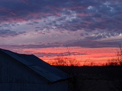 Sunset on the Farm 3