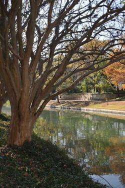 San Antonio River 4