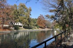 San Antonio River 1