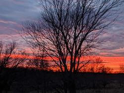 Sunset on the Farm 2