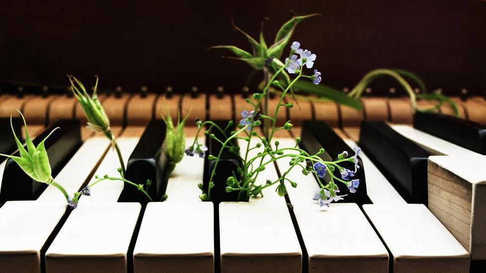 pianoforte.jpeg